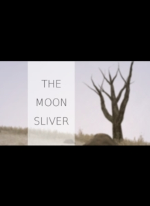 themoonsliver