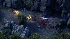 gamereleasepillarsofeternity_3